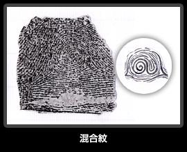 指紋の種々相 - 札幌の占い師「...