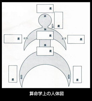 算命学上の人体図