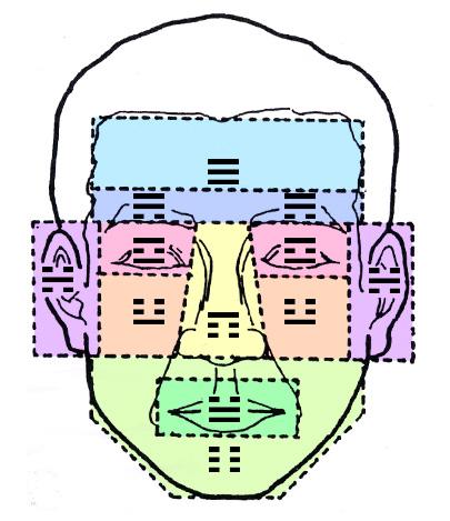 顔面における五官三部の八卦配当