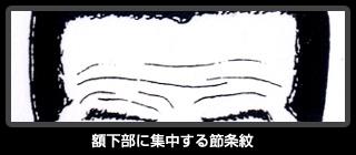 額下部に集中する節条紋