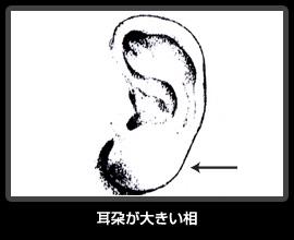 耳朶が大きい相